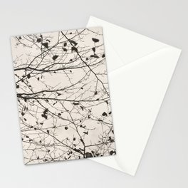boughs pale Stationery Cards