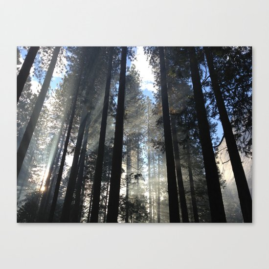 just live Canvas Print