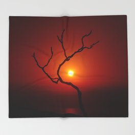 Evening Branch II Throw Blanket