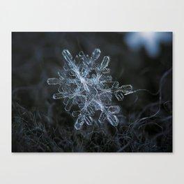 Snowflake of January 18 2013 Canvas Print