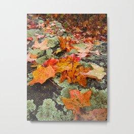 Autumn Leaves on Stone Metal Print