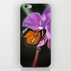 Butterfly Garden 2 iPhone & iPod Skin