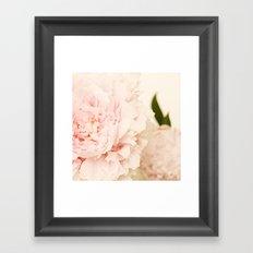 Peony No.2 Framed Art Print