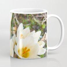 MEADOW of SPRING Mug