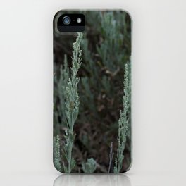 Purple and Sage iPhone Case