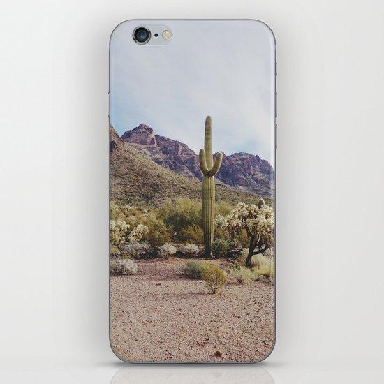Arizona Cactus iPhone & iPod Skin