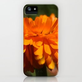 Aroma orange flower iPhone Case