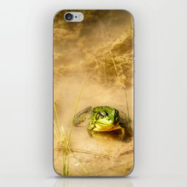 The Pond 2 iPhone Skin