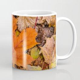 Season Autumnal Fallen Leaves Coffee Mug
