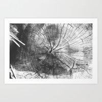 splinter. Art Print