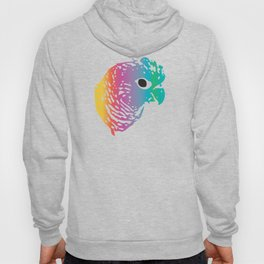 Rainbow Parrot Hoody
