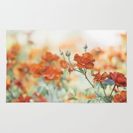 Orange Rose Flower Photography, Red Orange Roses, Burnt Orange Flowers Rug