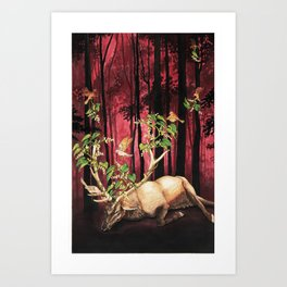 Scala Naturae Art Print