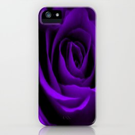 A Purple Rose iPhone Case