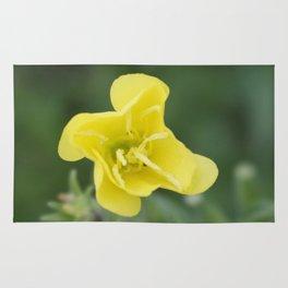 professional flower Rug