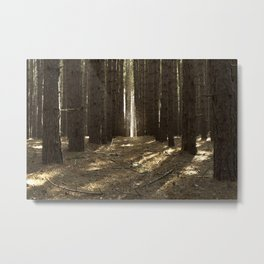 Up from the Dead Metal Print