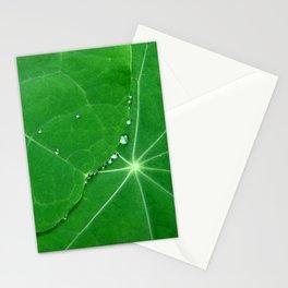 Nasturtium Dew Stationery Cards