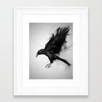 crow Framed Art Prints featuring Crow by Adam Flynn