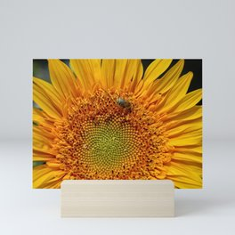 Bee and Dew on Sunflower Mini Art Print