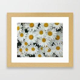 Daisy be me Framed Art Print