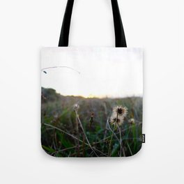 Fields of Sunshine Tote Bag