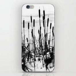 Winter Cattails iPhone Skin