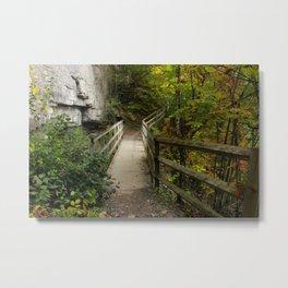Foliage Bridge Metal Print