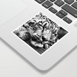 Snow Leopard Slumber Sticker