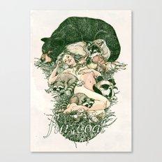Fur Coat Canvas Print