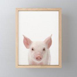 Baby Pig, Piglet, Baby Animals Art Print By Synplus Framed Mini Art Print