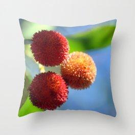 Strawberry tree fruits 8697b Throw Pillow