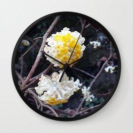 Mitsumata Wall Clock