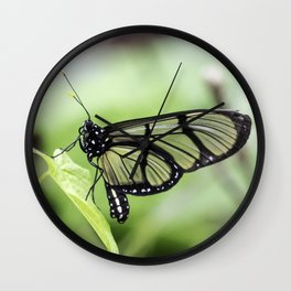 Glass Wing Butterfly Wall Clock