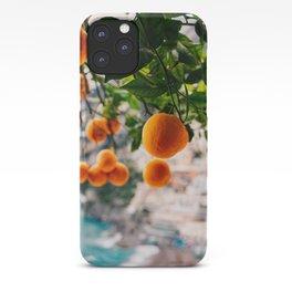 Amalfi Coast Oranges iPhone Case