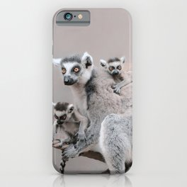 RINGTAILED LEMUR FAMILY by Monika Strigel iPhone Case