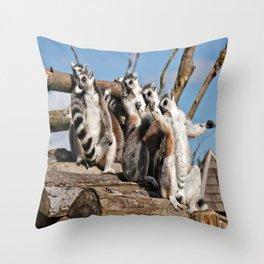Sunbathing Ring-Tailed Lemurs Throw Pillow
