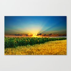 A New Day In The Farm Fields - Painting Style Canvas Print