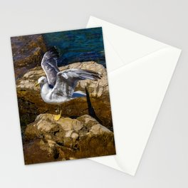 Adriatic Seagull  Stationery Cards