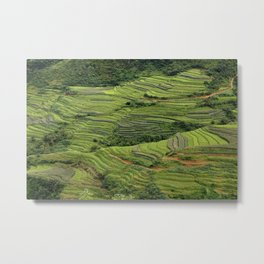 Yunnan Terraces Metal Print