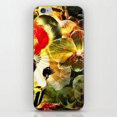 Retro look iPhone & iPod Skin