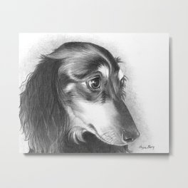 The Dachshund Metal Print