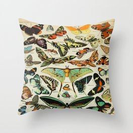 Butterfly Vintage Scientific Illustration French Language Encyclopedia Lithographs Educational Diagr Throw Pillow