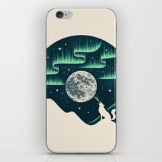 Arctic Tune iPhone Skin