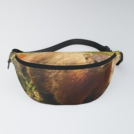 Hello There Fanny Pack