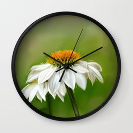 Little White Cone Flower Wall Clock