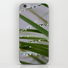 After the Storm iPhone Skin