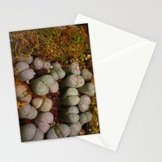 Cactus Stones Stationery Cards