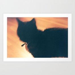 Cat at the Crossroad Art Print