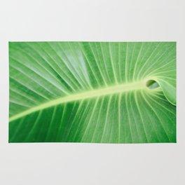 Palm CR Rug