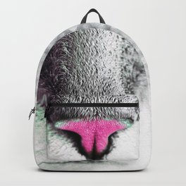 The Nose of the Cat Backpack